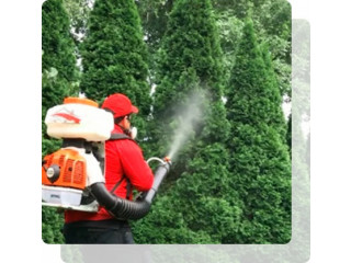Long Island Tick And Mosquito Control by MosquitoBrothers.Com