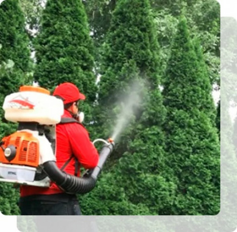 long-island-tick-and-mosquito-control-by-mosquitobrotherscom-big-0